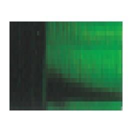 Verde Vejiga