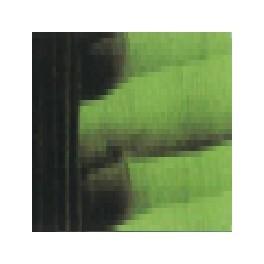 Verde goya oscuro